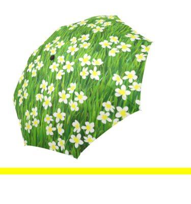 umbrella grass and flowers4